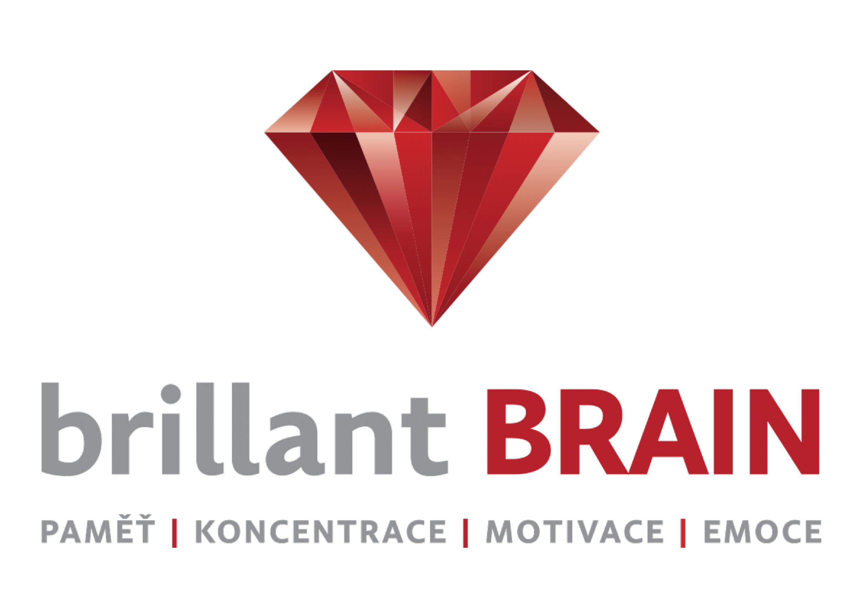 Brillant Brain Logo für Outlook Page 1